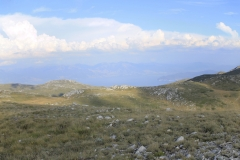 resized-Panorama8